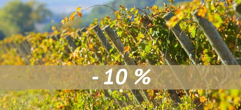 Gîtes de Fontfroide : vigne couleurs automne vacances - hiver printemps